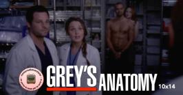 Grey's Anatomy 10x14
