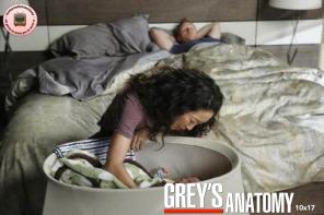 Grey's Anatomy 10x17