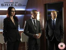 shield 1x16