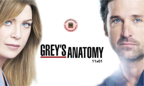 Grey's anatomy 11x01